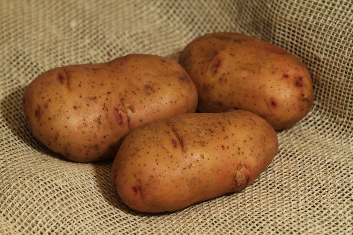 Картофель Тирас