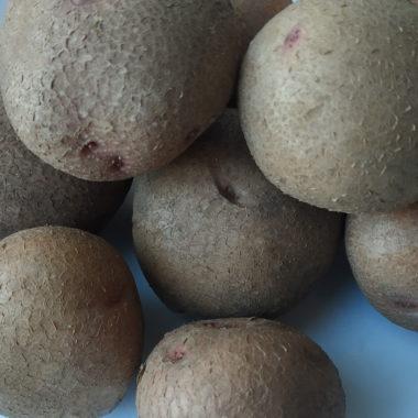 бульби сорту картоплі Шедевр